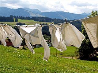 大家族の洗濯物をガンガン乾かす「衣類乾燥除湿器」をスクープせよっщ(゜▽゜щ)❤